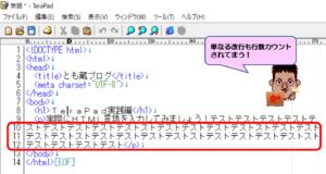 TeraPad論理行のチェックを外した画面