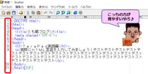 TeraPadルーラー行番号設定後の画面