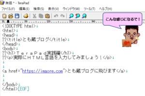 TeraPadにソースコード貼り付けた画面
