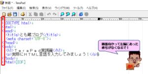 TeraPad行番号のチェックを外した画面