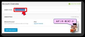 APIキーの入力画面