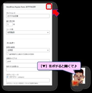 WordPress Popular Posts詳細設定画面